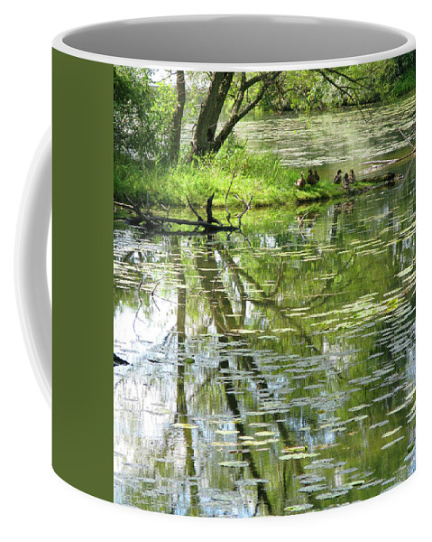 Reflection Coffee Mug featuring the photograph Tranquility by Ann Horn