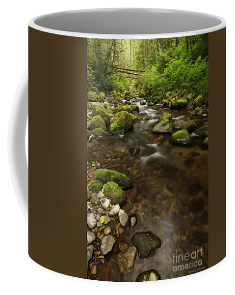 Woods Coffee Mug featuring the photograph Tranquility by Winston Rockwell
