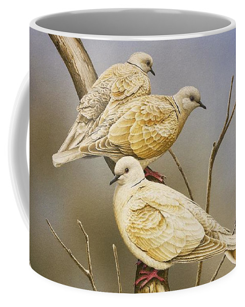 Doves Coffee Mug featuring the painting Tranquillity - Ring-Necked Doves by Frances McMahon