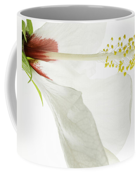 Hibiscus Coffee Mug featuring the photograph Transparent Hibiscus by James Ekstrom