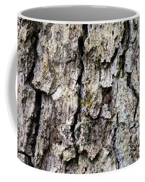 Fine Art Photography Coffee Mug featuring the photograph Tree Bark by Ulli Karner