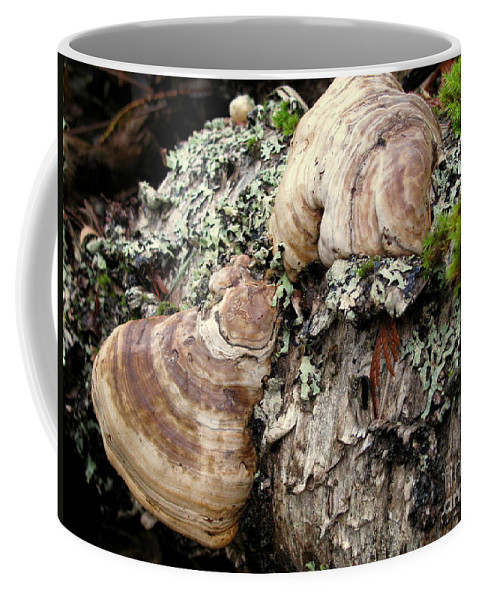 Fungi Coffee Mug featuring the photograph Tree Growths by Leone Lund