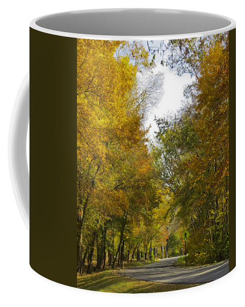 Algonkian Park Coffee Mug featuring the photograph Tree Lined Park On A Fall Day by Deb Breton