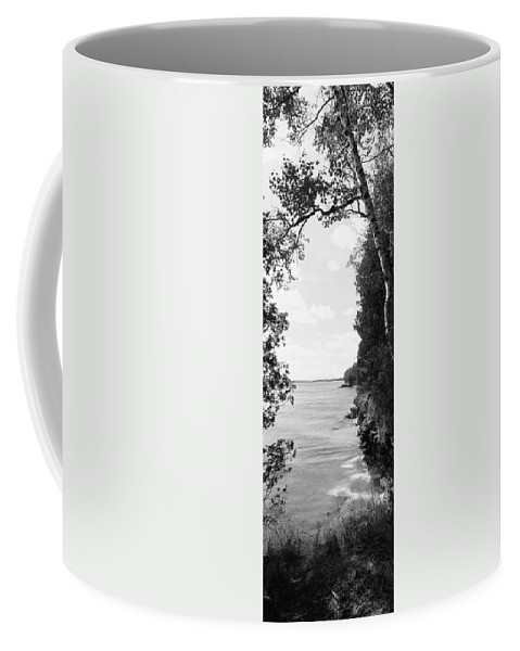 Photography Coffee Mug featuring the photograph Trees At The Lakeside, Cave Point by Panoramic Images