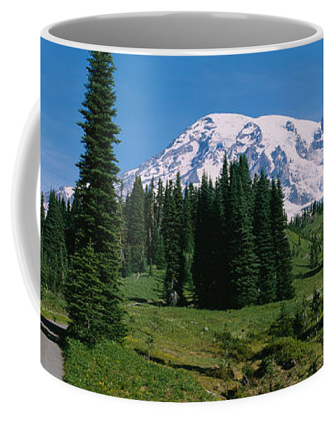 Photography Coffee Mug featuring the photograph Trees In A Forest, Mt Rainier National by Panoramic Images