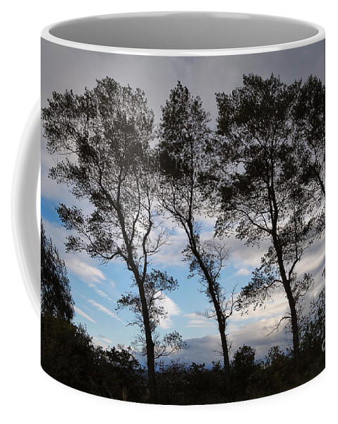 Nature Coffee Mug featuring the photograph Trees by Louise Heusinkveld