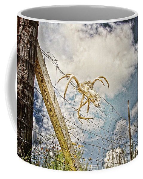 Skull Coffee Mug featuring the photograph Trophy Display by Scott Pellegrin