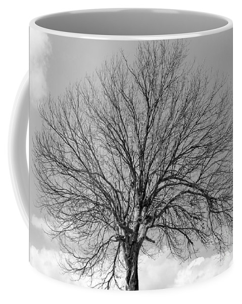 Black And White Coffee Mug featuring the photograph Tropic Winter by Amar Sheow