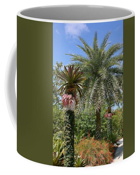 Palm Coffee Mug featuring the photograph Tropical Garden by Kim Hojnacki
