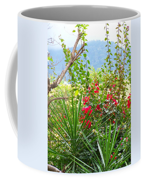 Tropical Colors Coffee Mug featuring the photograph Tropical Red Against Cool Mountain Mists by Pamela Smale Williams