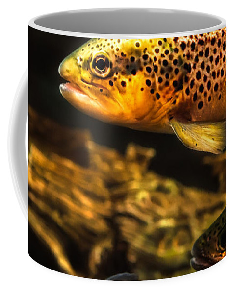 Trout Coffee Mug featuring the photograph Trout Swiming In A River by Bob Orsillo