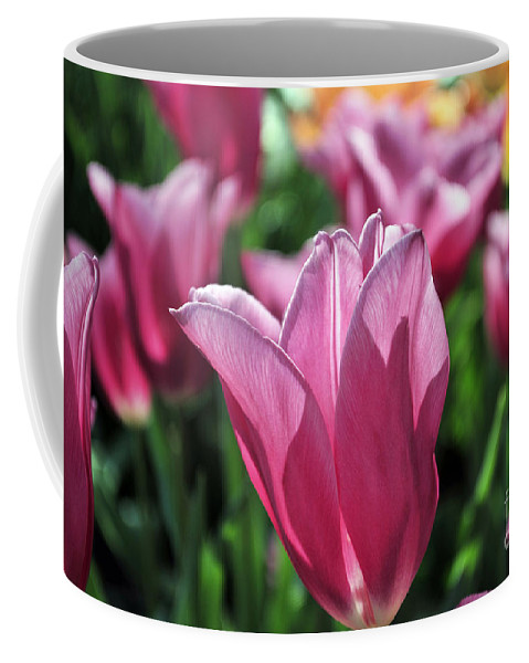 Spring Coffee Mug featuring the photograph Tulip Angel by Terri Winkler