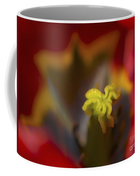 Tulip Coffee Mug featuring the photograph Tulip Center by Sharon Talson