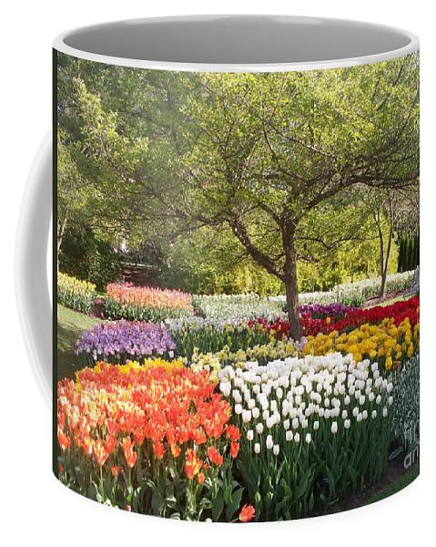 Tulip Coffee Mug featuring the photograph Tulip Garden by Eric Schiabor