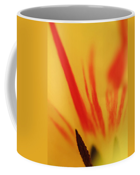 Flower Coffee Mug featuring the photograph Tulip by Robert Mitchell