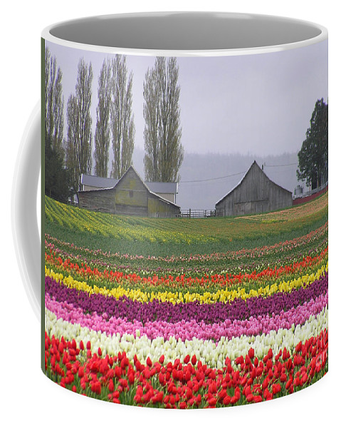 Tulips Coffee Mug featuring the photograph Tulip Town Barns by Louise Magno