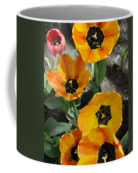 Tulips Coffee Mug featuring the digital art Tulips Tp by Jim Brage