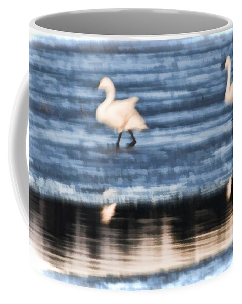 Tundra Swans Coffee Mug featuring the photograph Tundra Swans Walking On Ice by Beth Sawickie