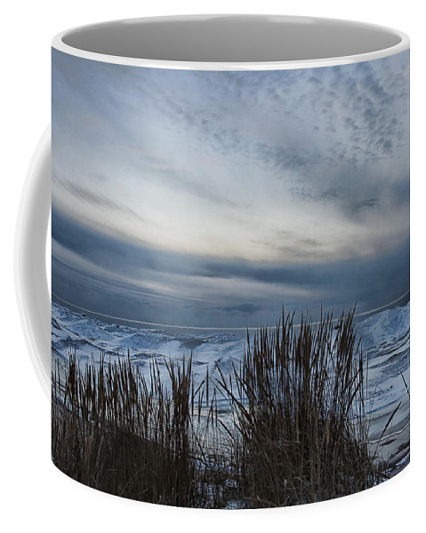Evie Coffee Mug featuring the photograph Tunnel Park Through The Grass Holland Michigan by Evie Carrier
