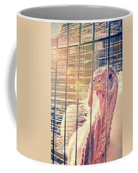 Turkey Coffee Mug featuring the photograph Turkey In The Cage by Caitlyn Grasso