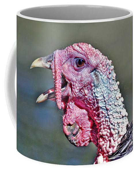 Turkey Coffee Mug featuring the photograph Wild Turkey by Savannah Gibbs