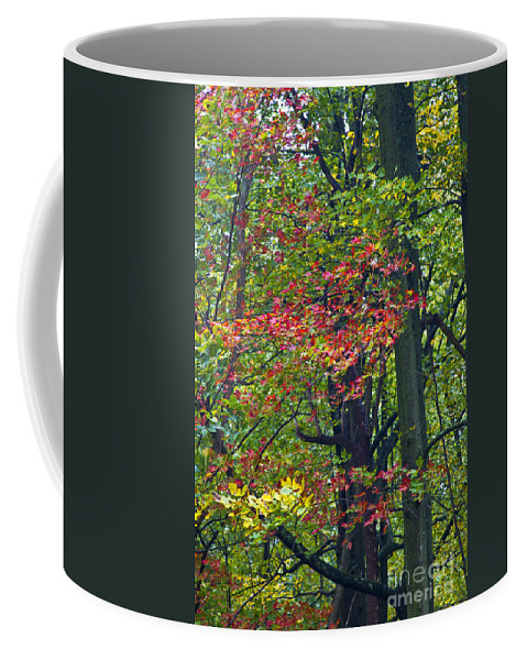 Virginia Coffee Mug featuring the photograph Turning by Kathy McClure