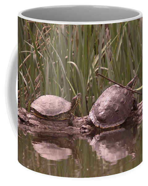 Reptiles Coffee Mug featuring the photograph Turtle Struggling To Rest On A Log With Its Buddy by Jeff Swan