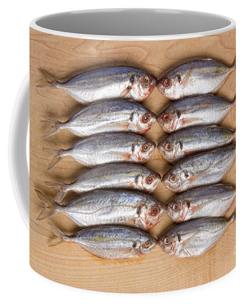 Fish Coffee Mug featuring the photograph Twelve Kissing Fish by James BO Insogna