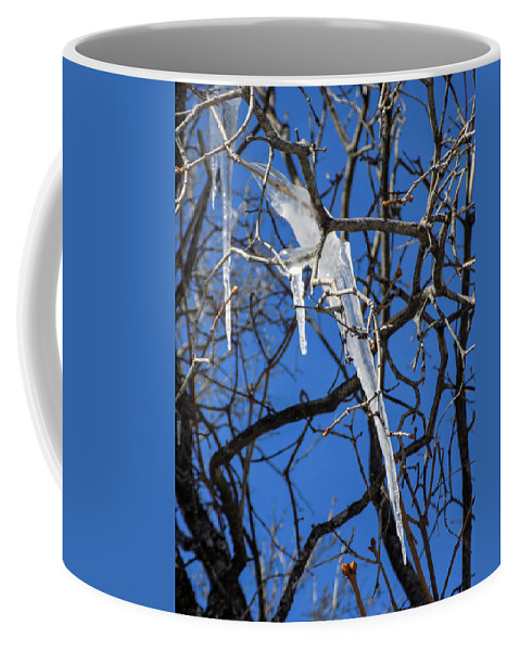 Icicles Coffee Mug featuring the photograph Twigs And Ice by William Tasker