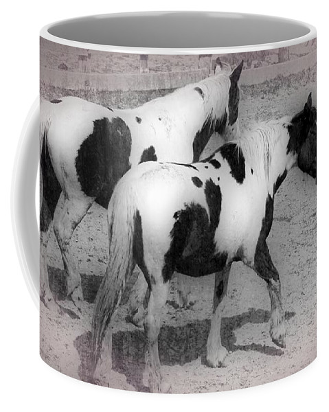 Horses Coffee Mug featuring the photograph Twins by Alice Gipson