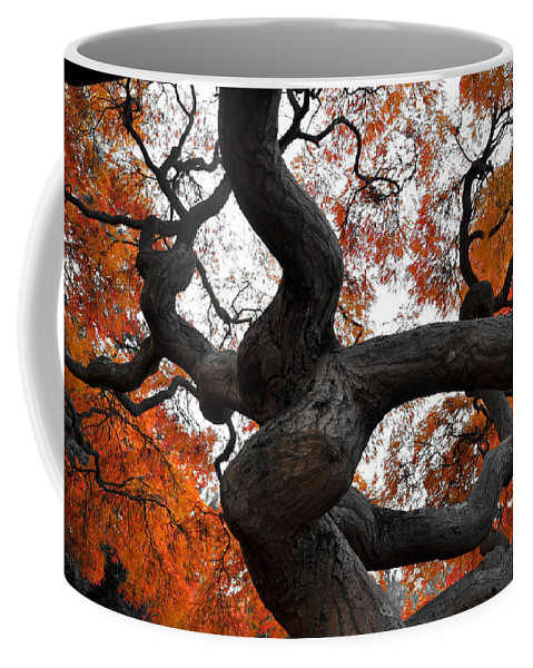 New Jersey Coffee Mug featuring the photograph Twisted by Kristopher Schoenleber