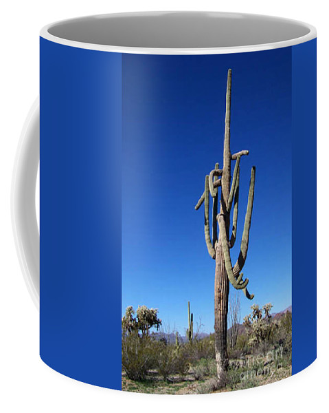 Sahuaro Coffee Mug featuring the photograph Twisted Sentinal by Kathy McClure