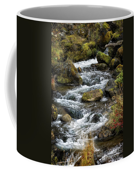Landscapes Coffee Mug featuring the photograph Twisted Waters by Wildlife Fine Art