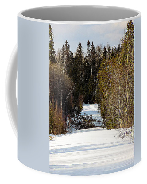 Woods Coffee Mug featuring the photograph Two Blown Over by William Tasker