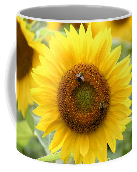 Two Busy Coffee Mug featuring the photograph Two Busy by Denyse Duhaime