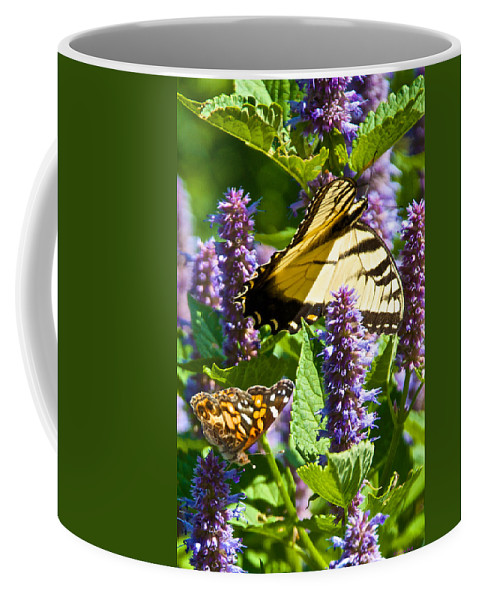 Butterflies Coffee Mug featuring the photograph Two Butterflies In The Afternoon Sun by Kristin Hatt