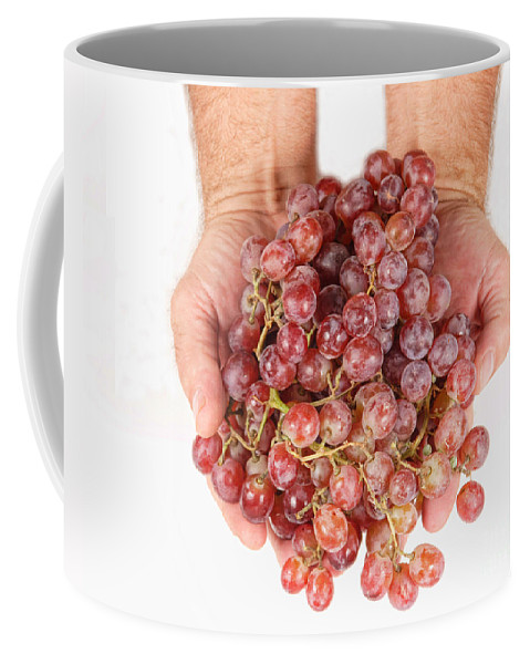 Grapes Coffee Mug featuring the photograph Two Handfuls Of Red Grapes by James BO Insogna