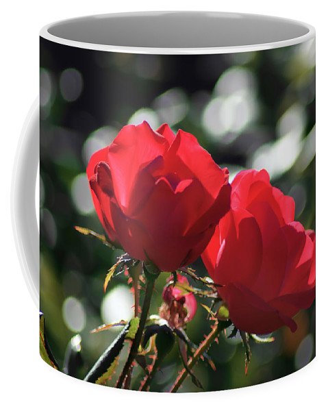 Affection Coffee Mug featuring the photograph Two Red Roses by Alex Grichenko