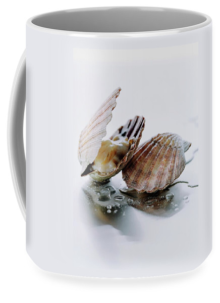 Cooking Coffee Mug featuring the photograph Two Scallops by Romulo Yanes
