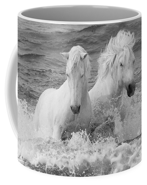 Horse Coffee Mug featuring the photograph Two White Horses in the Waves by Carol Walker
