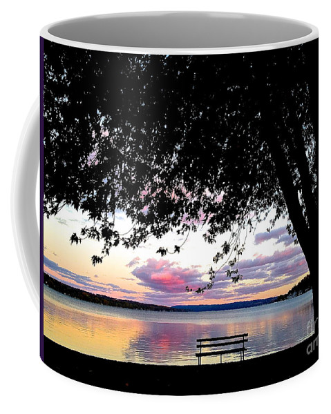 Skaneateles Lake Coffee Mug featuring the photograph Under The Tree by Margie Amberge