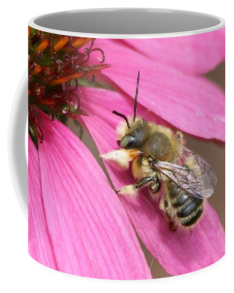 Honey Bee Coffee Mug featuring the photograph The Color Of Honey by Angela Koehler