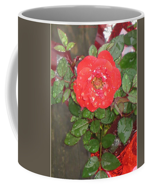 Symbol For Love Coffee Mug featuring the photograph Universal Love by Sonali Gangane