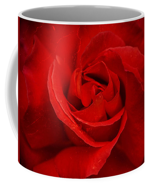 Brown Coffee Mug featuring the photograph Valentine Rose by Mark Llewellyn