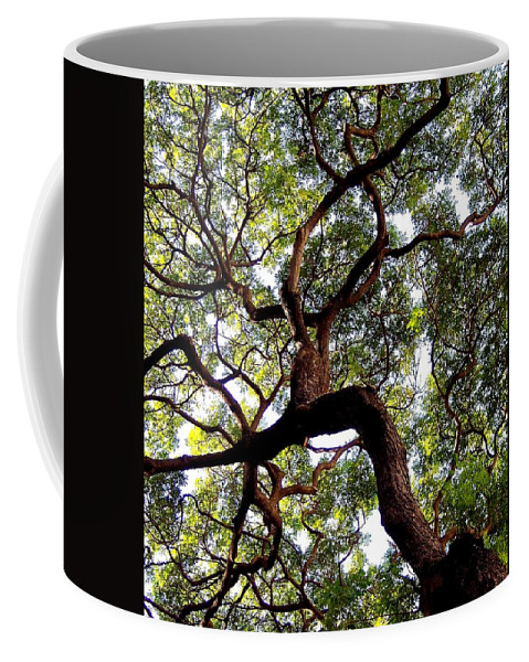 Trees Coffee Mug featuring the photograph Veins Of Life by Karen Wiles