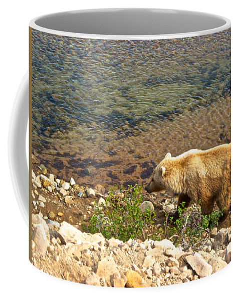 Very Light-colored Grizzly Bear In Moraine River Coffee Mug featuring the photograph Very Light-colored Grizzly Bear In Moraine River In Katmai Nnp-ak by Ruth Hager