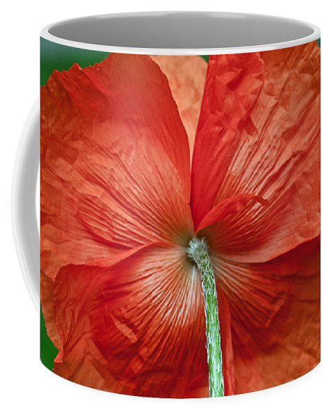 Poppy Coffee Mug featuring the photograph Veterans Day Remembrance by Tikvah's Hope