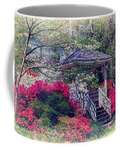 Azaleas Coffee Mug featuring the photograph Victorian Garden by Lynne Jenkins
