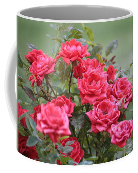 Roses Coffee Mug featuring the photograph Victorian Rose Garden by Carol Groenen