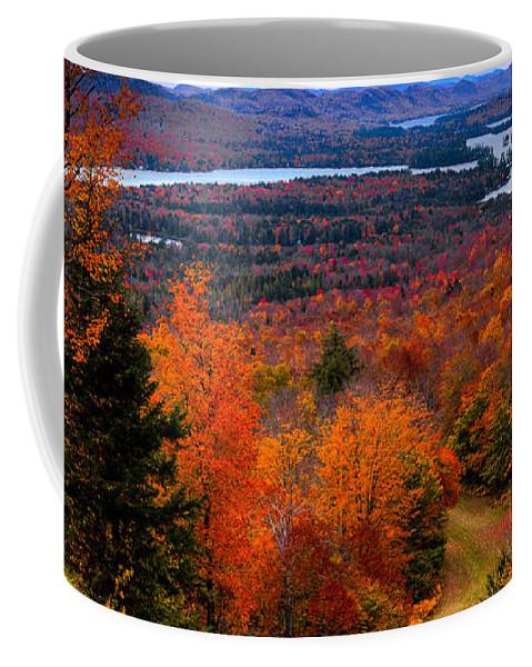 View From Mccauley Mountain Ii Coffee Mug featuring the photograph View From Mccauley Mountain II by David Patterson